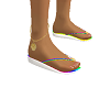 Flip flops N Anklet SS