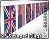 25 Flags Stringed
