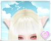 BW Tiny Cat Ears