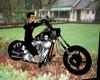 harley knight rider