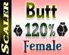 Butt / Hip Resizer 120%