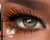 Makeup hot colors 03