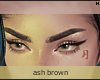 Domesticity Brows \ Ash