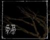 sb dead forest tree III