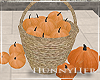 H. Pumpkin Basket