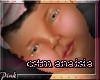 P|Anaisia:CSTM BNDL