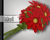Mel*Daisy Bouquet