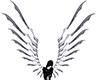 Transcendant Wings