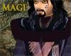 Robe of the Magi Warrior