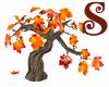 Lil Autumn Chiar