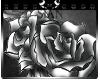 [S] Roses