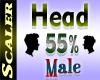 Head Resizer 55%