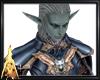 Elf Avatar