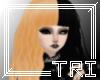 [TRI] Ginger/Black [m/f]