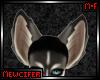 M! Husky Ears 1