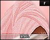 Y. Towel Q/P Ahmar