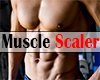 *R*Muscle Scaler