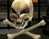 Halloween Skull Pet