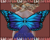 [LW]Kid Butterfly Wings