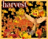Harvest fall particle