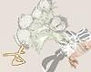 D| Anné Roses