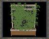 ⚡ Ivy Planter