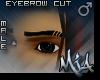 [MJA] Eybrow cut male