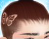 ♵☆ a butterfly