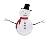 Snowman Picture Poses