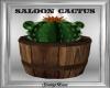 Saloon Cactus