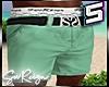 ! Chino Shorts Mint