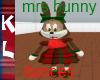 mrs DANCING BUNNY