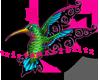 Hummingbird R