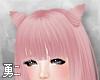 Y' Haydie Pink