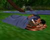 (SL) Sleeping Bag for 2