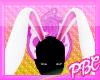 *PBC* Pink Bunny