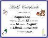 ZaynexL0s Birth Certif