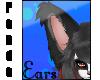 Panda- Ears V5
