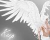 [Keep] Draconic Wings