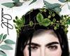 M. Tree Leaves Crown