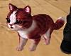 Animated Kitty