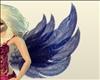 Saphire Pixie Wings