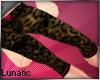 ~L* Leopard Pants