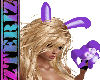 01 Bunny Ears Animated