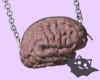 ☽ Bag Brain