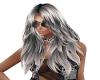 Hair SilverBlack Liz 2