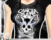 ; CB-Support - Bones