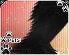 [Pets] Zorro | leg fluff