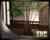 ENC. CITY APT PLANT
