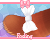 🎀 Lady tail 1